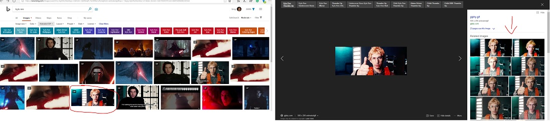 How to Reverse Image Gifs using Bing