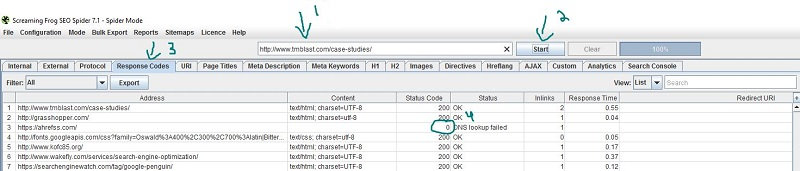 How to Audit a New URL with Screaming Frog