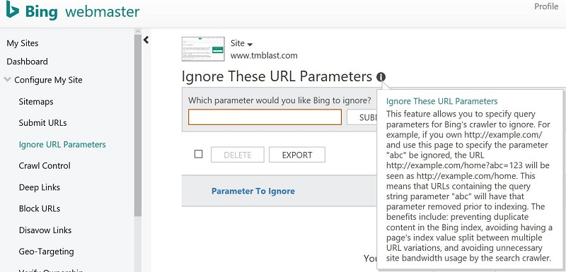 Bing Ignore these URL Parameters