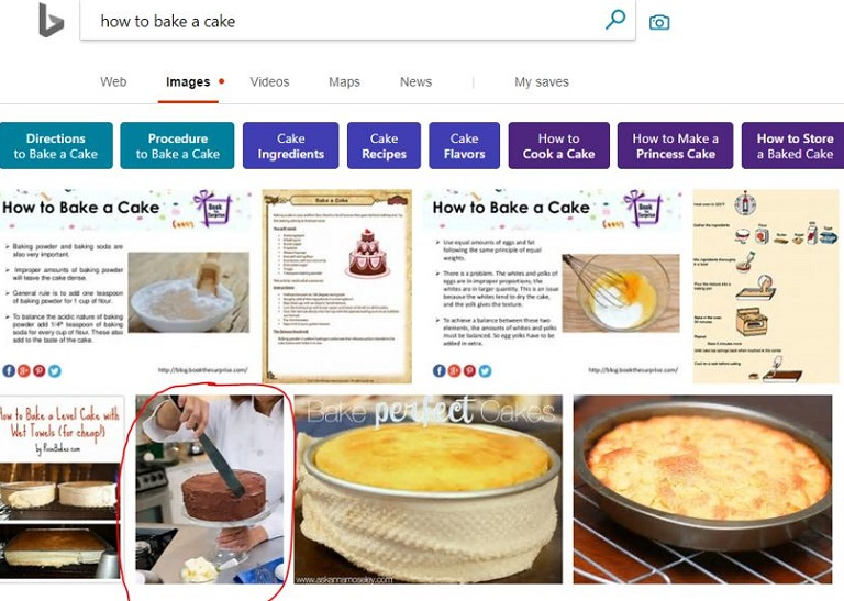 Image Search Example in Bing looking for a Good ALT Tag