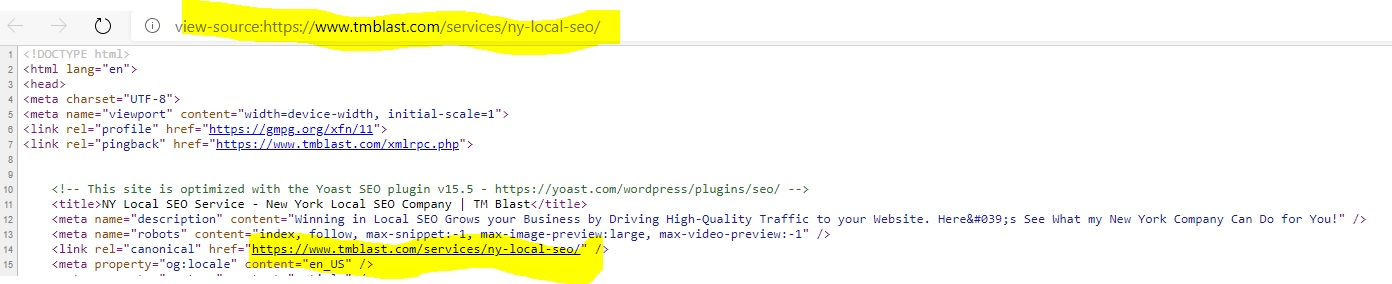 How to Check the Canonical Tag on a Webpage